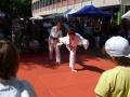 buergerfest_ulb_20110529_091