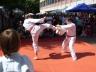 buergerfest_ulb_20110529_084