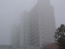 Klinikum Frankfurt Höchst im Nebel
