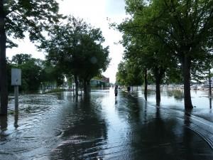 Die Rheinstraße im hessischen Gernsheim während des Hochwassers am 5. Juni 2013