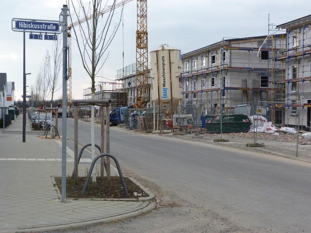 Hortensienring, Frankfurt am Main Unterliederbach, Nordzeile. Die Häuser gehen ihrer Fertigstellung entgegen