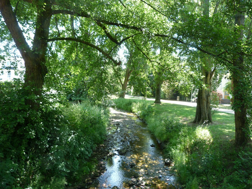 Der Liederbach im Frankfurter Stadtteil Unterliederbach: Im Sommer führt er wenig Wasser.
