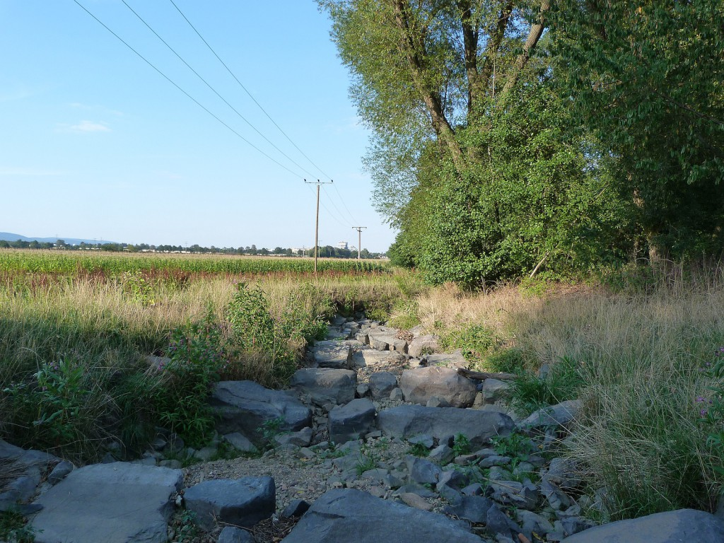 Das trockene Bachbett zwischen Liederbach am Taunus und Unterliederbach