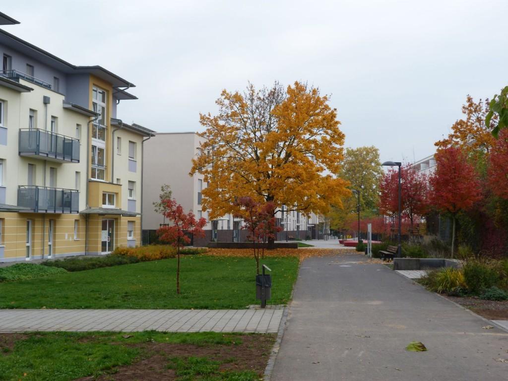 Gepiden-Forum Frankfurt am Main Unterliederbach