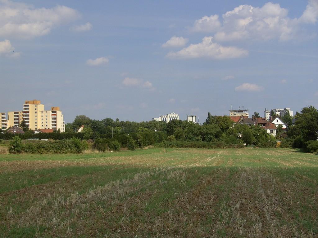 Blick von der Bahnstrecke nach Königstein in Richtung Osten (2010)