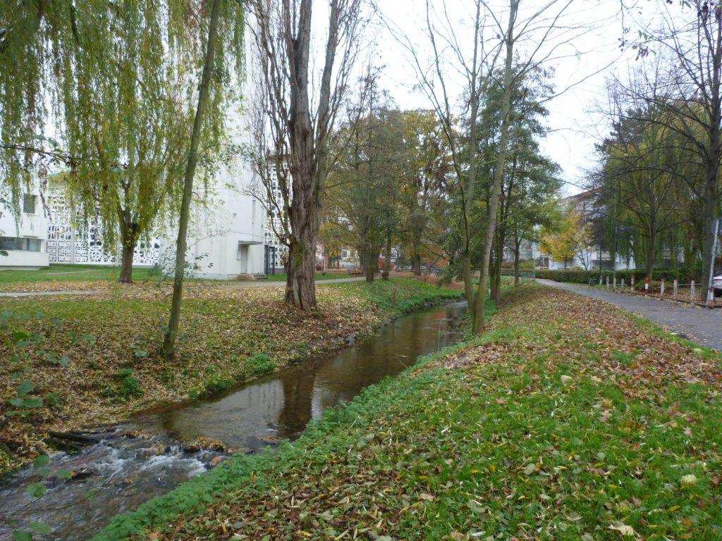 Frankfurt am Main Unterliederbach - Herbst am Liederbach