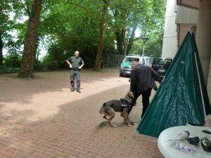 Schutzhund im Einsatz