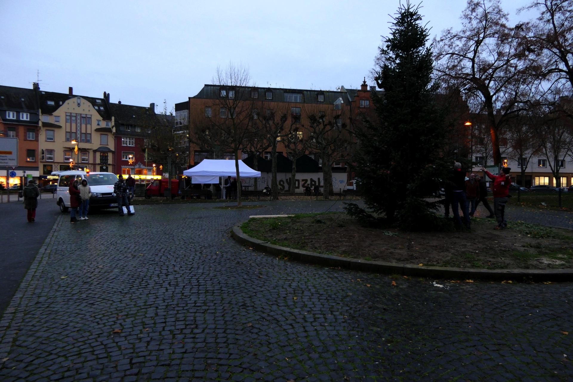 Weihnachtsbaum am Dalbergkreisel