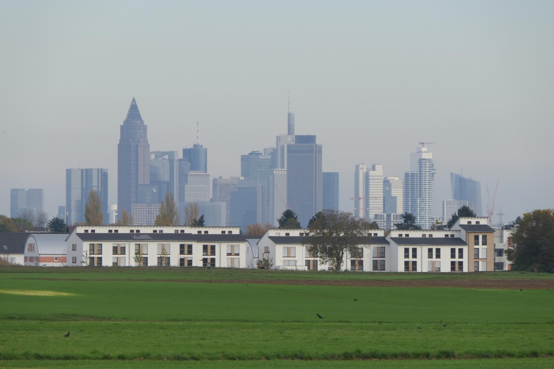 Hortensienring, Frankfurt am Main Unterliederbach, mit Frankfurter Skyline im Hintergrund.