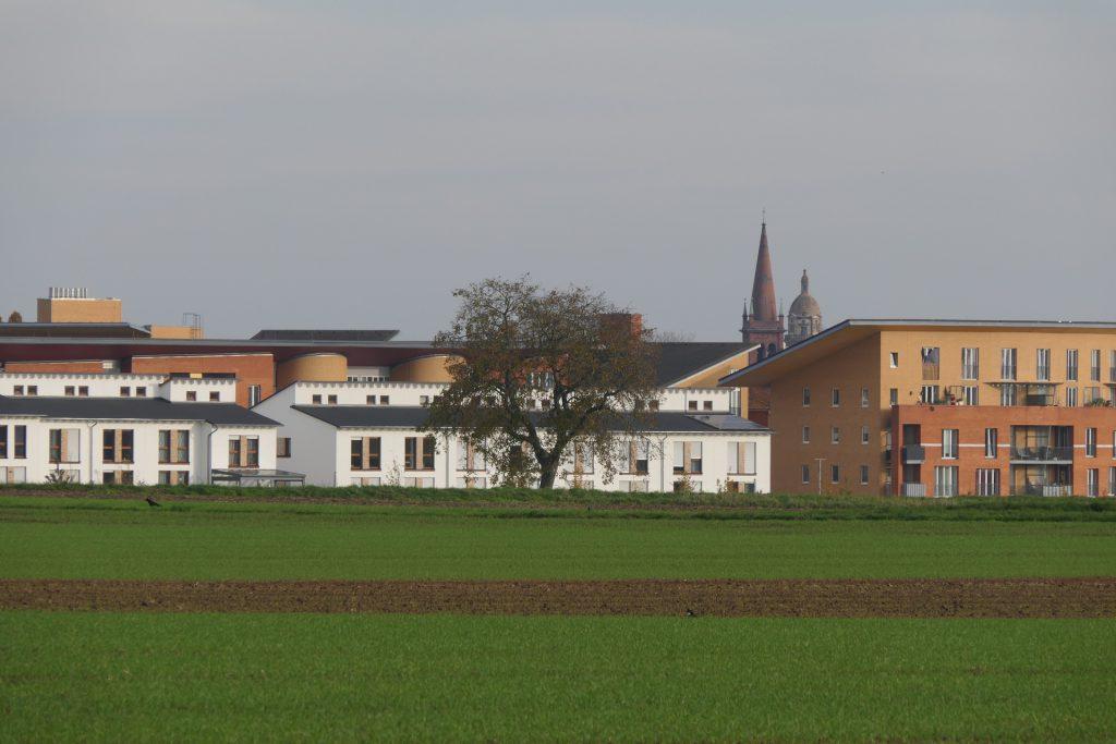 Hortensiering, Frankfurt am Main Unterliederbach