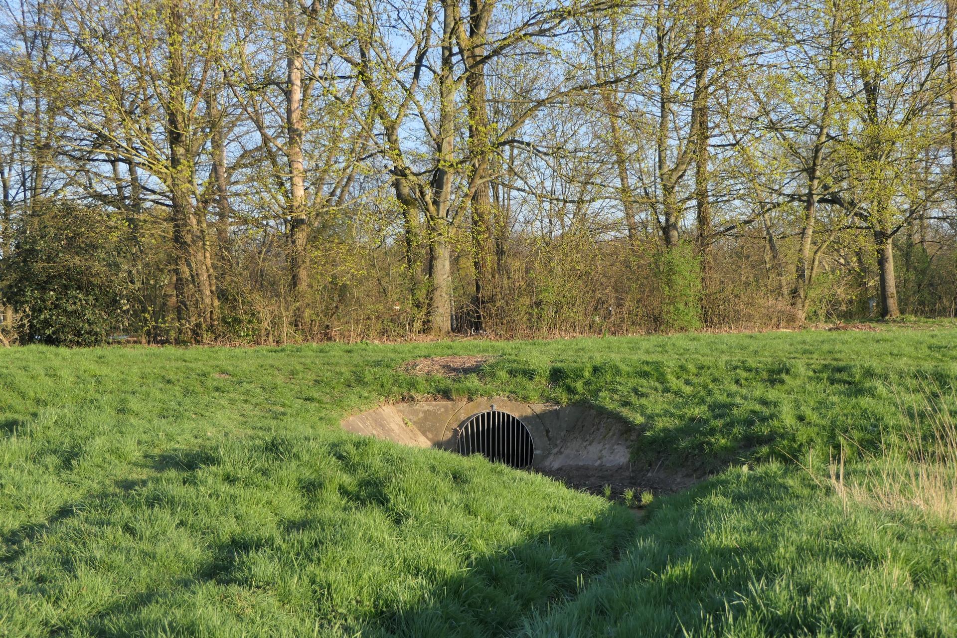Zusammenfluss zweier Gräben nahe der Jahrhunderhalle, Frankfurt am Main Unterliederbach