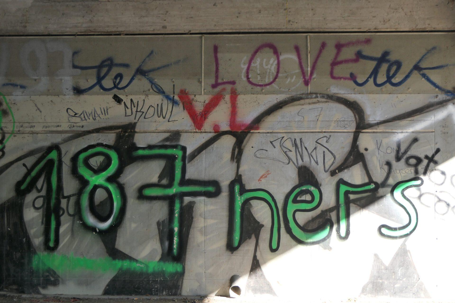 187er unter einer Brücke über die Nidda
