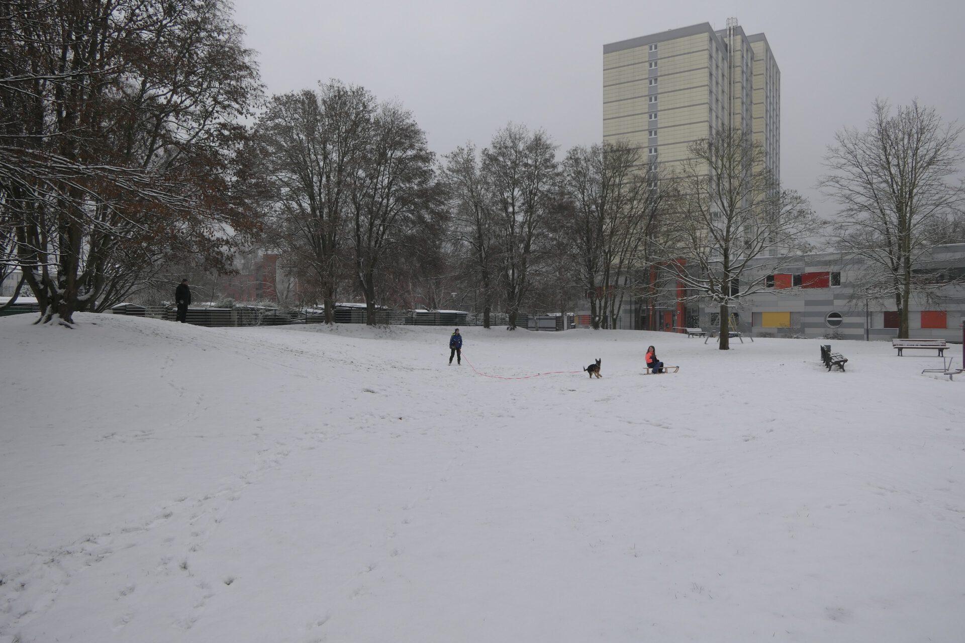 Schnee im Emil-Siering-Park