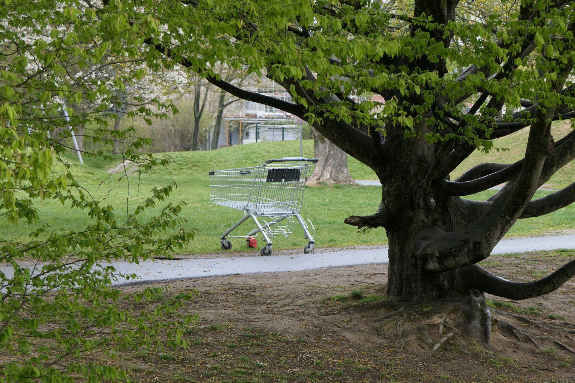 Einkaufswagen im Park